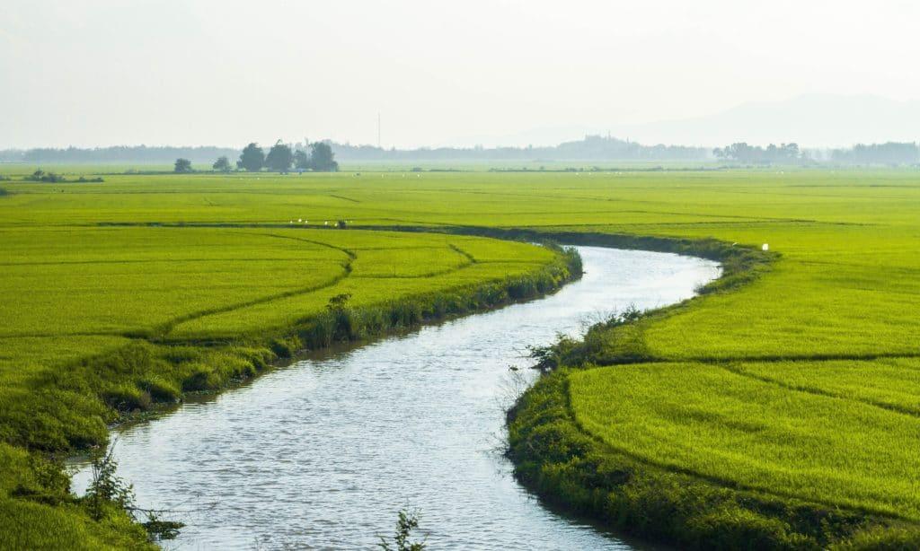 inquinamento terreni e acque